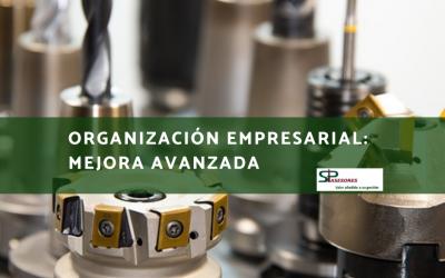 Organización Empresarial: Mejora Avanzada